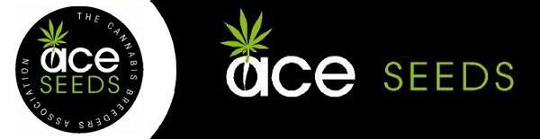 Ace seeds banner