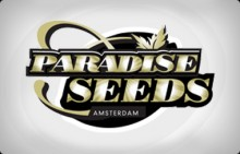 Belladonna 10ks/reg.